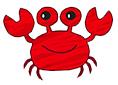 Krabbengruppe
