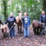 Das Bild zeigt drei Bewohner und eine Betreuerin mit Pferden und Ponys.