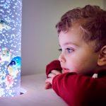 Das Bild zeigt einen kleinen Jungen, der sich bunte Plastikfische in einer beleuchteten Wassersäule anschaut.