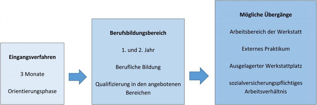 Das Schaubild zeigt den Aufbau der Ausbildung.