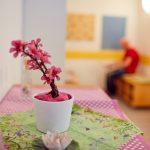 Das Bild zeigt eine pinke Kunstpflanze auf einem Sideboard.