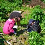 Das Bild zeigt drei Personen bei der Gartenarbeit im NaWit-Naturgarten.