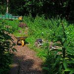 Das Bild zeigt des NaWit-Naturgarten im Muttental.