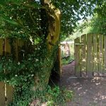 Das Bild zeigt den Eingang zum Naturgarten.
