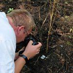 Das Bild zeigt einen der Teilnehmer, der ein Schlangen-Gelege fotografiert.