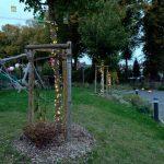 Das Bild zeigt das mit Lichtern geschmückte Gelände der Wohngemeinschaft.